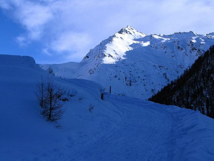 Foto: Andreas Koller / Ski Tour / Aus dem Astental auf den Stellkopf (2851 m) / Maggernigspitze oder Makernispitze (2640 m) / 01.01.2010 21:58:19