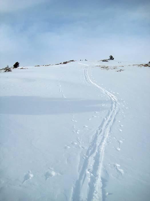 Foto: Mike Mike / Ski Tour / Fanningberg - Einsteigertour / 30.12.2009 19:58:57