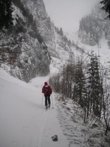 Foto: Wolfgang Lauschensky / Ski Tour / Streicher oder Inzeller Kienberg / über die Felsstufe führt ein oft verschütteter Güterweg / 31.12.2009 20:31:54