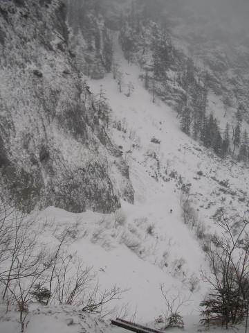 Foto: Wolfgang Lauschensky / Ski Tour / Streicher oder Inzeller Kienberg / Abfahrt über die Felsstufe in den flachen Rückweg / 31.12.2009 20:31:22