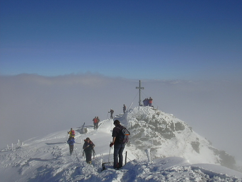 Foto: Wolfgang Lauschensky / Ski Tour / Über Feldalphorn und Schwaigberghorn zum Breiteggern / Feldalphorn / 02.01.2010 15:52:44