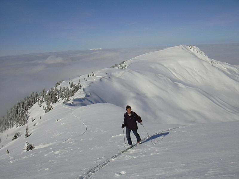 Foto: Wolfgang Lauschensky / Ski Tour / Über Feldalphorn und Schwaigberghorn zum Breiteggern / Feldalphorn vom Schwaigberghorn / 02.01.2010 15:52:22
