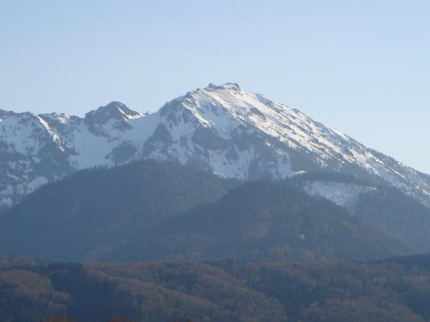 Foto: Manfred Karl / Ski Tour / Auf den Hochfelln von Kohlstatt / Hochfelln / 03.01.2010 18:42:27