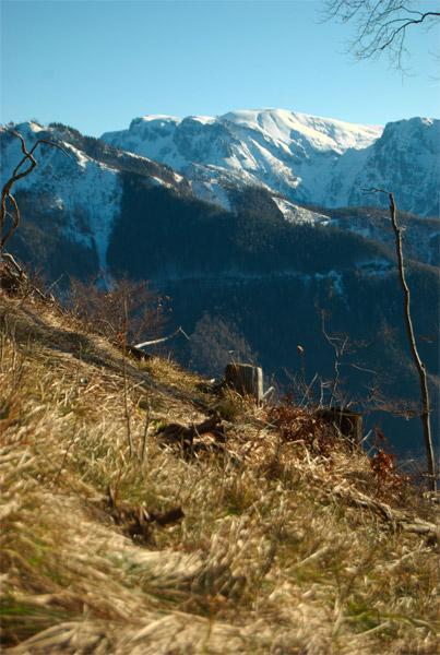 Foto: schrutkaBua / Wander Tour / Eibling 1.108m / Blick ins Sengsengebirge, Hoher Nock / 05.01.2010 16:09:34