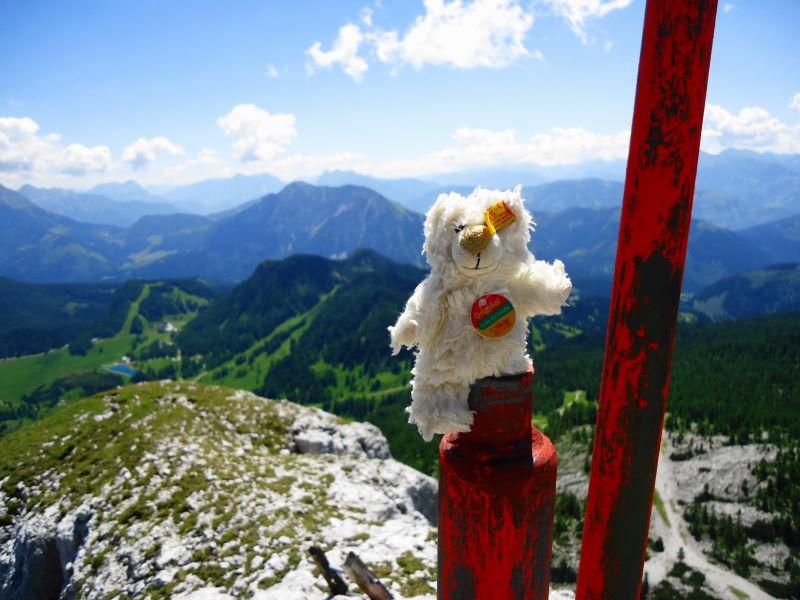 Foto: Günter Siegl / Wander Tour / Ramesch (2.119m) - Ost/West-Überschreitung / Basty war voller Freude, dass Freund Manfred wieder mit von der Partie war. / 28.07.2017 20:39:14