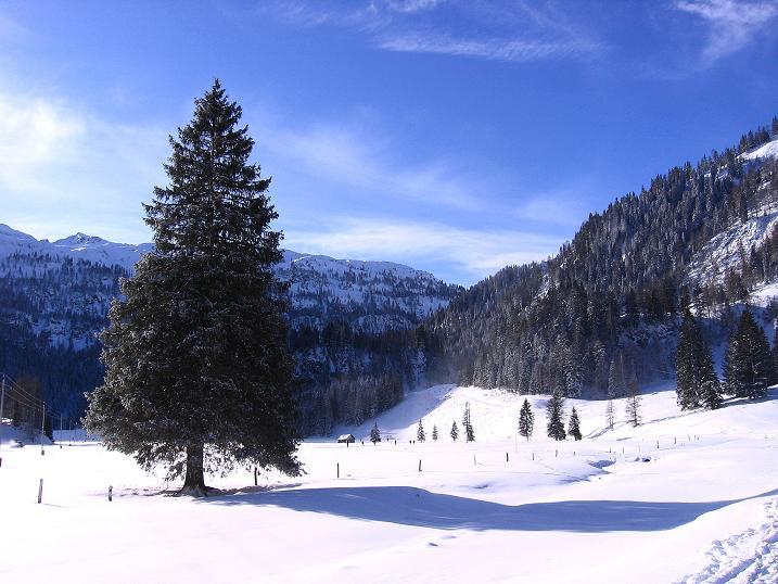 Foto: Andreas Koller / Ski Tour / Traumtour auf Spirzinger und Spazeck (2066 m) / 06.01.2010 02:20:46