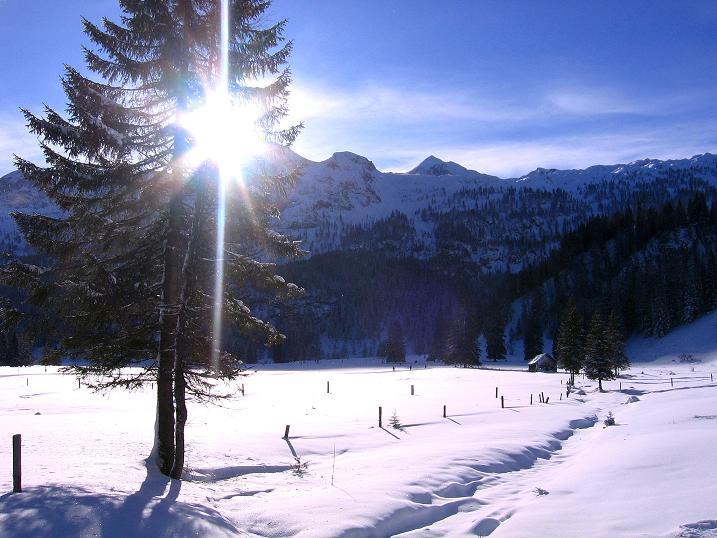 Foto: Andreas Koller / Ski Tour / Traumtour auf Spirzinger und Spazeck (2066 m) / 06.01.2010 02:20:25