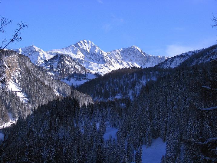 Foto: Andreas Koller / Ski Tour / Traumtour auf Spirzinger und Spazeck (2066 m) / 06.01.2010 02:19:09
