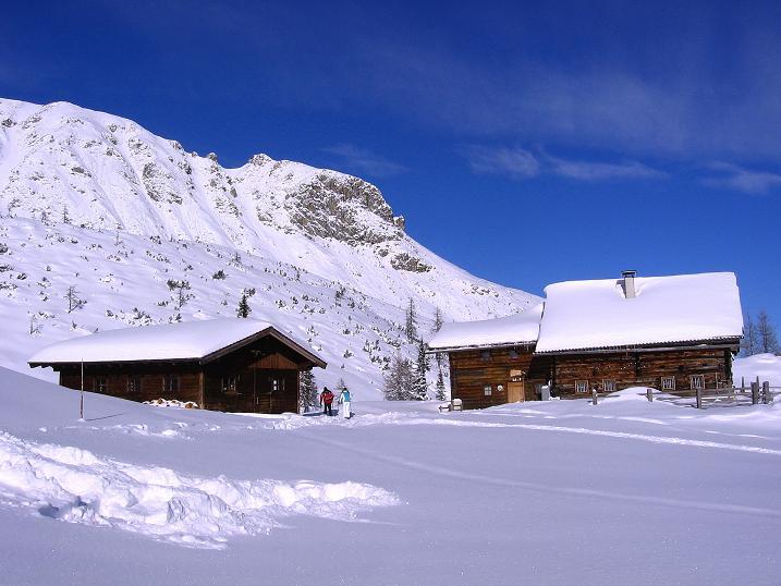 Foto: Andreas Koller / Ski Tour / Traumtour auf Spirzinger und Spazeck (2066 m) / Kurz vor der Südwiener Hütte / 06.01.2010 02:17:11
