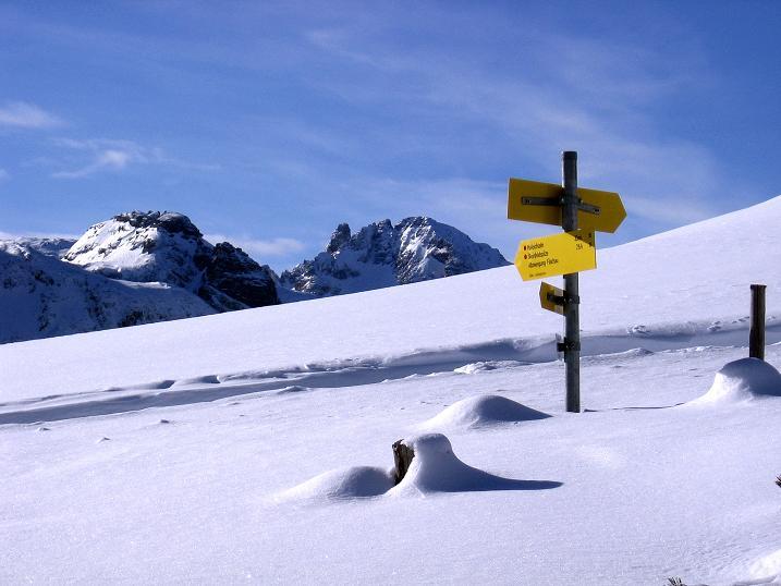 Foto: Andreas Koller / Ski Tour / Traumtour auf Spirzinger und Spazeck (2066 m) / Blick von der Südwiener Hütte zum Faulkogel (2654 m) / 06.01.2010 02:16:24