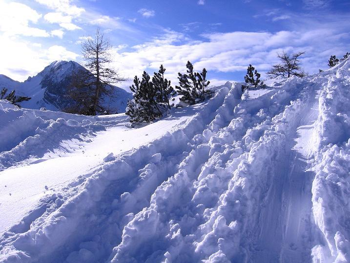 Foto: Andreas Koller / Ski Tour / Traumtour auf Spirzinger und Spazeck (2066 m) / 06.01.2010 02:14:16