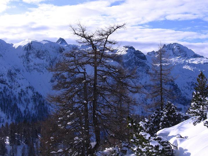 Foto: Andreas Koller / Ski Tour / Traumtour auf Spirzinger und Spazeck (2066 m) / 06.01.2010 02:14:09