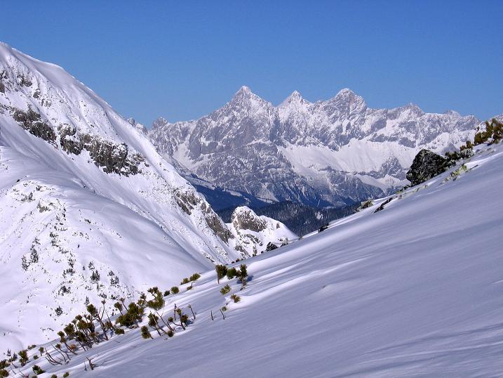 Foto: Andreas Koller / Ski Tour / Traumtour auf Spirzinger und Spazeck (2066 m) / Prachtvoll zeigt sich der Dachstein (2996 m) / 06.01.2010 02:09:37