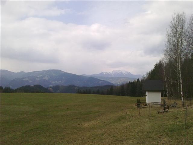 Foto: Bernhard Meusburger / Mountainbike Tour / Leoben-Chromwerk-Gh.Spitzer-Walteralm-Leoben / 12.04.2010 23:09:12
