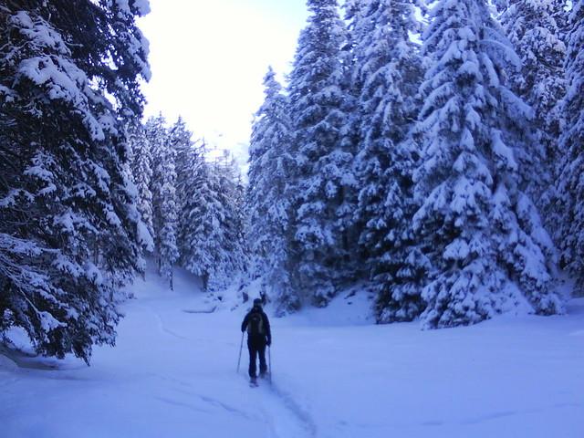 Foto: grasoh / Schneeschuh Tour / Schlicker Alm / Winterwunderland / 06.01.2010 20:40:19