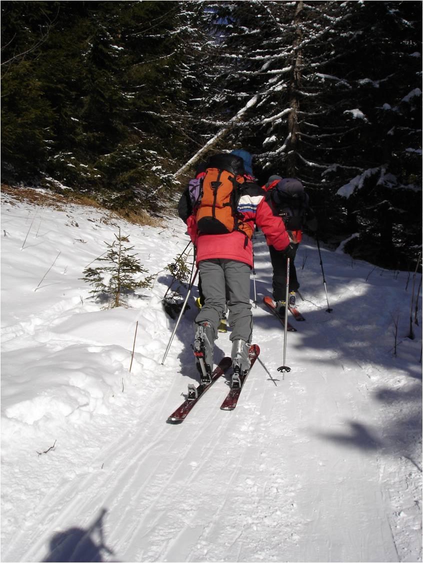 Foto: gumpiand / Ski Tour / Über die Urbanbauernalm zum Schöpfing  / die ersten Meter zwischen Jägerkeusche und Neuseßwirtalm / 07.01.2010 10:26:38