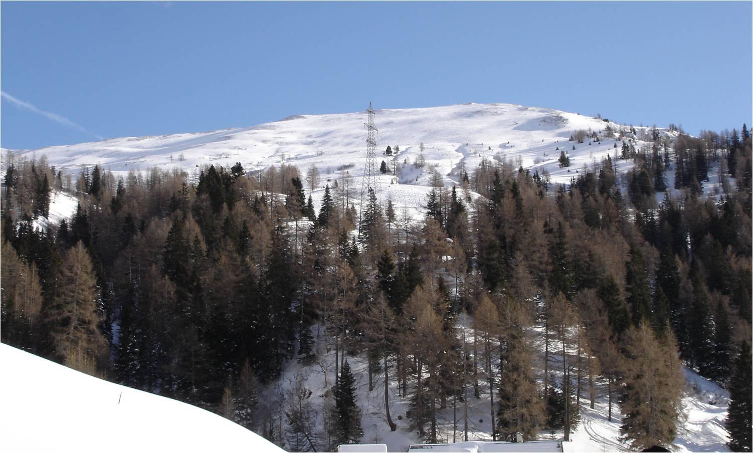 Foto: gumpiand / Ski Tour / Über die Urbanbauernalm zum Schöpfing  / Blick von der Urbanbauernalm zur Aignerhöhe / 07.01.2010 10:28:38