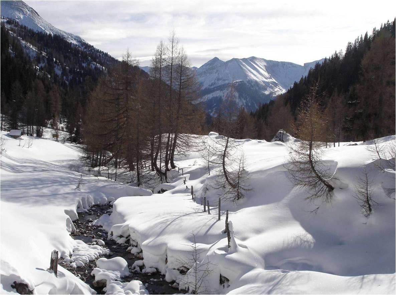 Foto: gumpiand / Ski Tour / Über die Urbanbauernalm zum Schöpfing  / Der Große Kesselbach bei der Brücke auf der Urbanbauernalm / 07.01.2010 10:34:25