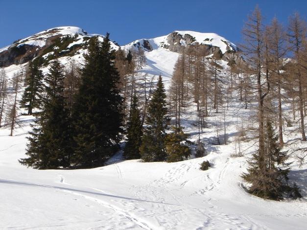 Foto: Manfred Karl / Ski Tour / Über die Hafeichtscharte auf den Großen Bärenstaffel / Gr. Bärnstaffl / 07.01.2010 20:15:44