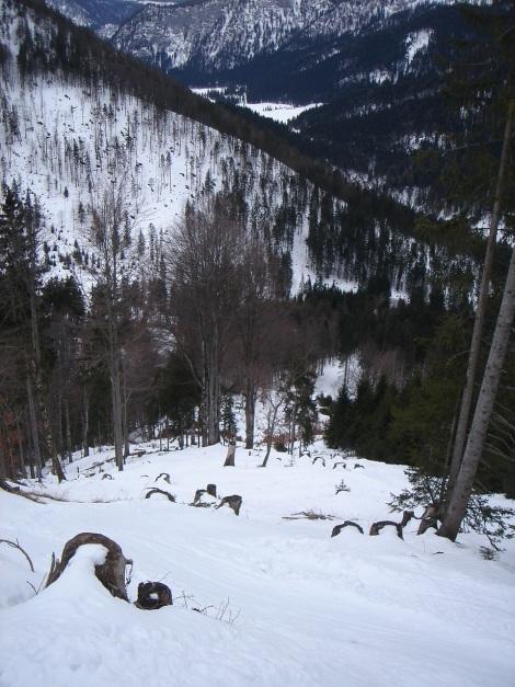 Foto: Manfred Karl / Ski Tour / Von Urschlau auf die Haaralmschneid / Direkte Abfahrt zur Längauer Alm / 07.01.2010 20:52:28