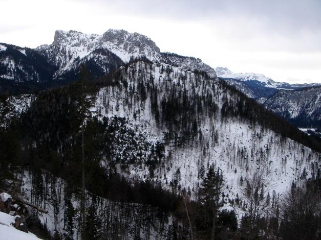 Foto: Manfred Karl / Ski Tour / Von Urschlau auf die Haaralmschneid / Hörndlwand und Gurnwandkopf von der Haaralm / 07.01.2010 20:51:54