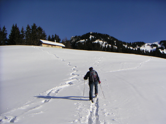 Foto: Wolfgang Lauschensky / Ski Tour / Hochgern 1743m / Ager-Gschwendalm / 08.01.2010 16:37:07