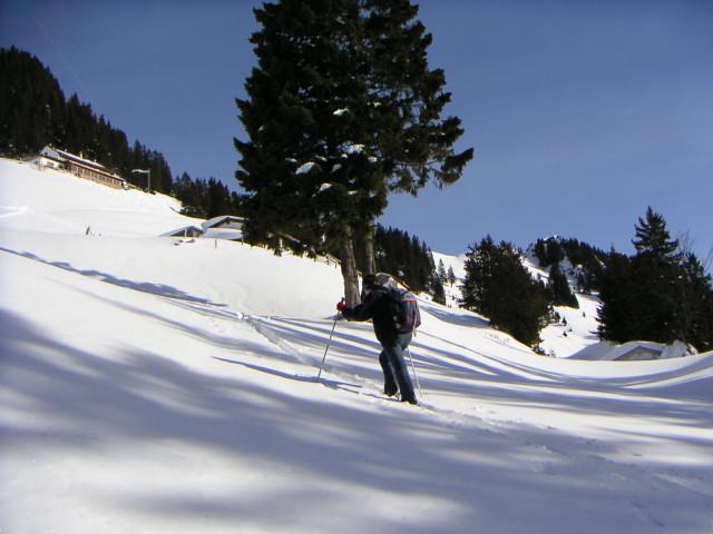 Foto: Wolfgang Lauschensky / Ski Tour / Hochgern 1743m / unterm Hochgernhaus / 08.01.2010 16:36:33
