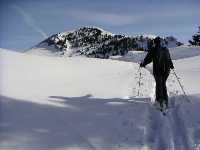 Foto: Wolfgang Lauschensky / Ski Tour / Hochgern 1743m / Westgratrücken / 08.01.2010 16:36:22