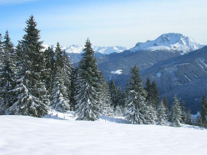 Foto: kleopatra / Rodel Tour / Rosskogelhütte / Blick auf den Patscherkofel / 08.01.2010 20:27:30