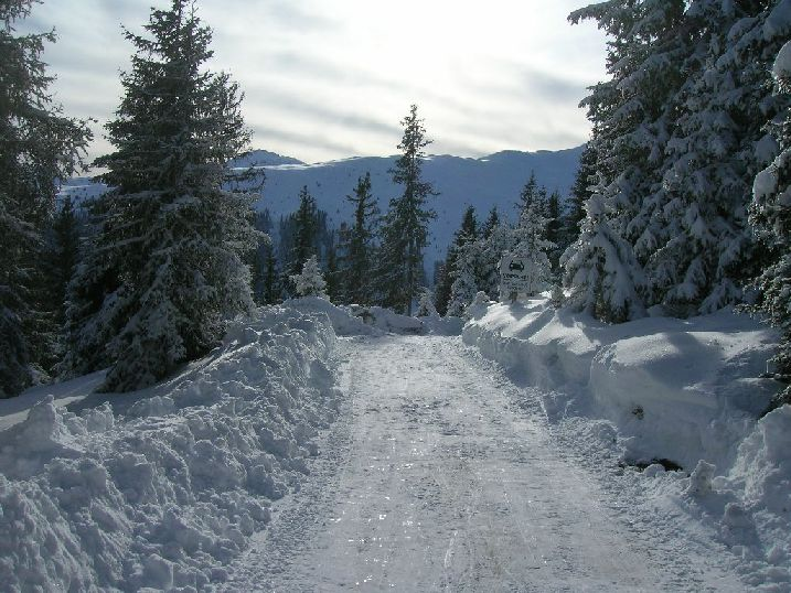 Foto: kleopatra / Rodel Tour / Rosskogelhütte / 08.01.2010 20:27:55