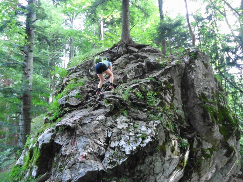 Foto: Günter Siegl / Wander Tour / Ost - Westüberschreitung Fahrnaugupf / Abstecher zum Baalstein / 20.08.2014 13:54:58