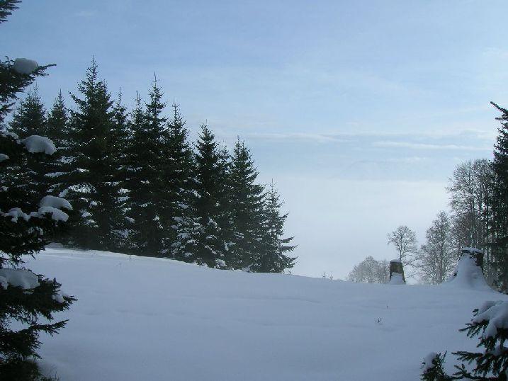Foto: kleopatra / Wander Tour / Ost - Westüberschreitung Fahrnaugupf / auf dem Gipfelplateau / 08.01.2010 23:34:36