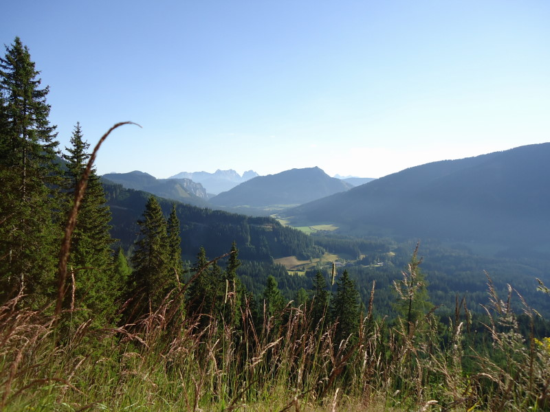 Foto: Günter Siegl / Wandertour / Bruderkogel - Massiger Aussichtsberg über der Pölsen / 04.08.2013 14:30:00