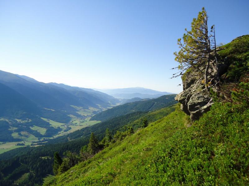 Foto: Günter Siegl / Wandertour / Bruderkogel - Massiger Aussichtsberg über der Pölsen / 04.08.2013 14:29:38
