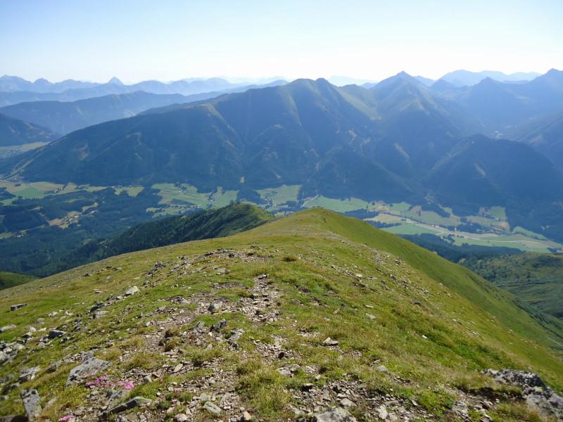 Foto: Günter Siegl / Wandertour / Bruderkogel - Massiger Aussichtsberg über der Pölsen / Aufstiegsweg / 04.08.2013 14:28:59