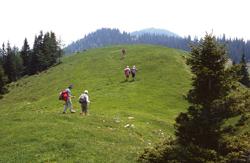 Foto: Kurt Schall / Wander Tour / Leobner Mauer, Hoher Schilling -  Höhenwanderung über der Eisenstraße / 09.01.2010 18:06:46