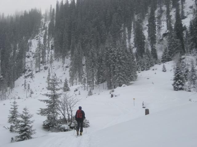 Foto: Wolfgang Lauschensky / Ski Tour / Gressenstein 2216m / Kastensteig über Waldsteilstufe / 10.01.2010 12:25:11