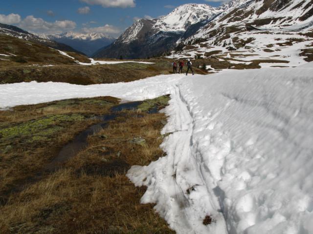 Foto: Wolfgang Lauschensky / Skitour / Zufallspitze – Monte Cevedale : Überschreitung / im Plimatal / 29.01.2010 18:02:10