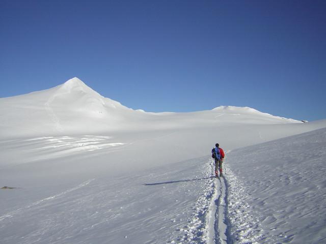 Foto: Wolfgang Lauschensky / Skitour / Johannisberg (3453m) und Hohe Riffl (3338m) / Johannisberg und Hohe Riffl über dem oberen Pasterzenboden  / 28.03.2010 17:29:07