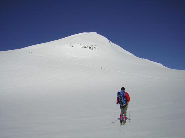 Foto: Wolfgang Lauschensky / Skitour / Johannisberg (3453m) und Hohe Riffl (3338m) / Ostflanke des Johannisbergs / 28.03.2010 17:28:57
