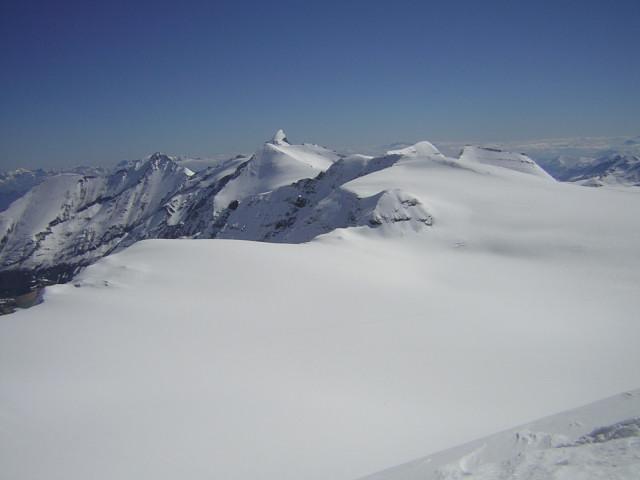 Foto: Wolfgang Lauschensky / Skitour / Johannisberg (3453m) und Hohe Riffl (3338m) / Glocknergruppe Nord mit markantem Wiesbachhorn / 28.03.2010 17:27:41