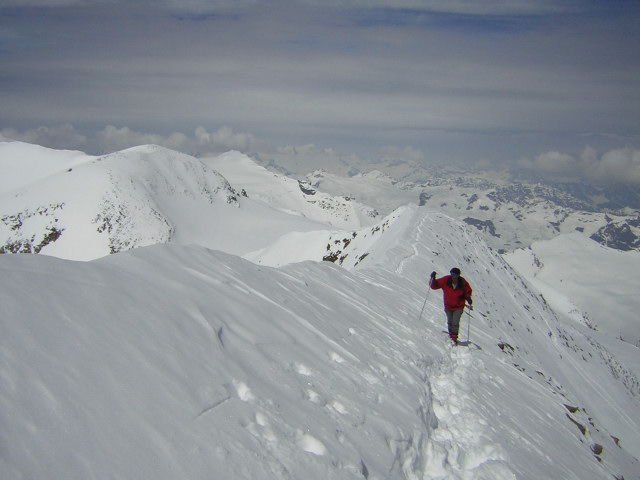 Foto: Wolfgang Lauschensky / Skitour / Mittlerer und Großer Bärenkopf (3358m+3396m) / am flachen Gipfelgrat / 07.05.2010 15:51:28