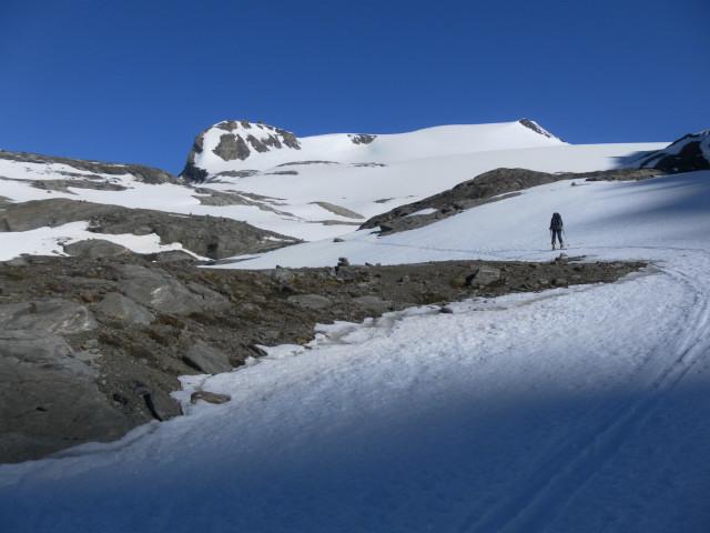 Foto: Wolfgang Lauschensky / Skitour / Mittlerer und Großer Bärenkopf (3358m+3396m) / Hoher Burgstall mit der Oberwalderhütte und Eiswandbichl. / 27.05.2014 21:40:12