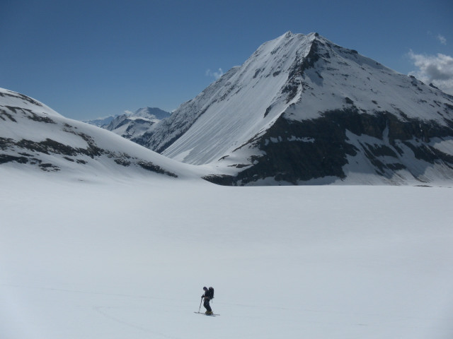 Foto: Wolfgang Lauschensky / Skitour / Mittlerer und Großer Bärenkopf (3358m+3396m) / Fuscherkarkopf-Nordwand aus dem südlichen Bockkarkees. / 27.05.2014 21:40:01