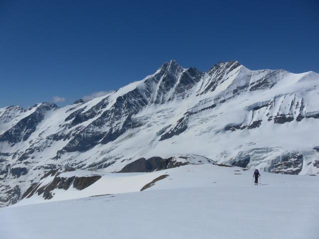 Foto: Wolfgang Lauschensky / Skitour / Mittlerer und Großer Bärenkopf (3358m+3396m) / Am Südrücken des Eiswandbichls mit Glockner-Nordwand. / 27.05.2014 21:39:43