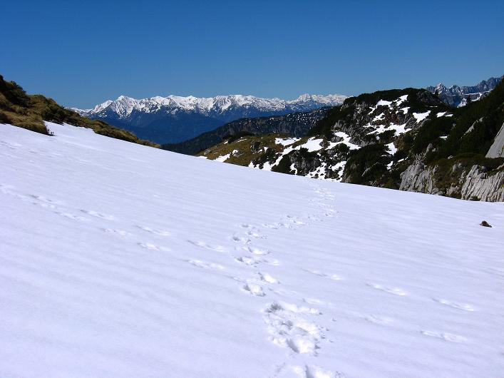 Foto: Andreas Koller / Klettersteigtour / Rosskopf Klettersteig und Rofanspitze (2259 m) / 09.06.2010 02:31:27