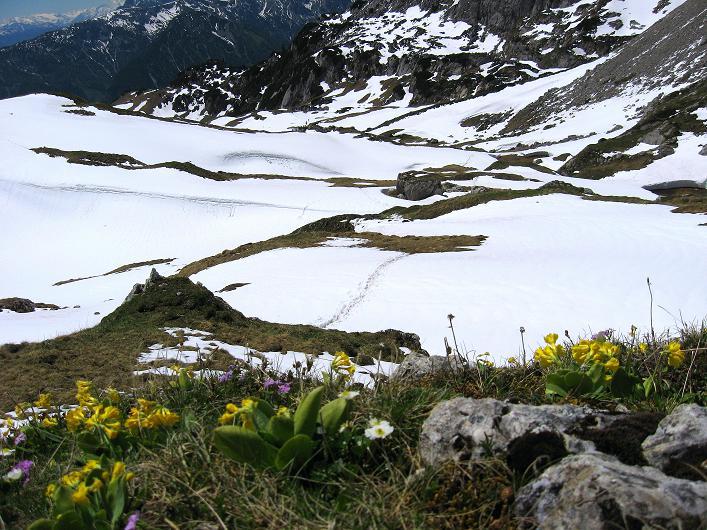 Foto: Andreas Koller / Klettersteigtour / Rosskopf Klettersteig und Rofanspitze (2259 m) / 09.06.2010 02:24:53