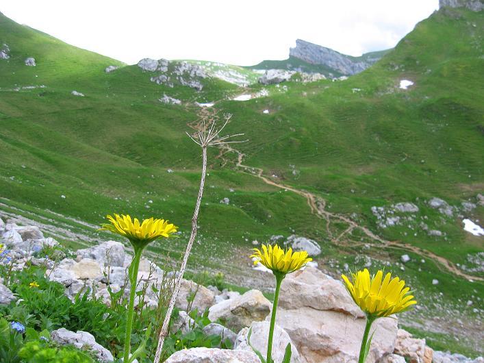 Foto: Andreas Koller / Klettersteigtour / Rosskopf Klettersteig und Rofanspitze (2259 m) / 14.07.2010 14:54:52