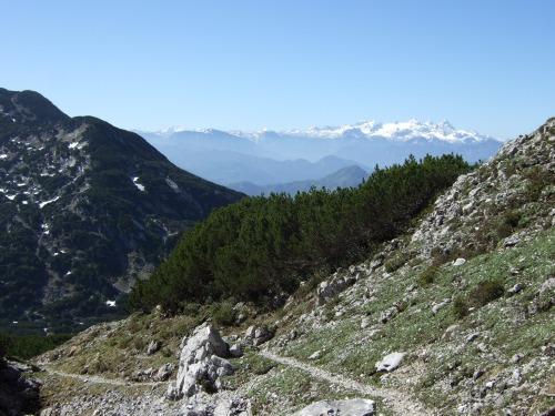 Foto: hofchri / Wandertour / Überschreitung Höllengebirge über Hochleckenhaus (1.574 m) / Abstieg in den Pfaffengraben - Dachsteinblick / 30.06.2010 19:30:43