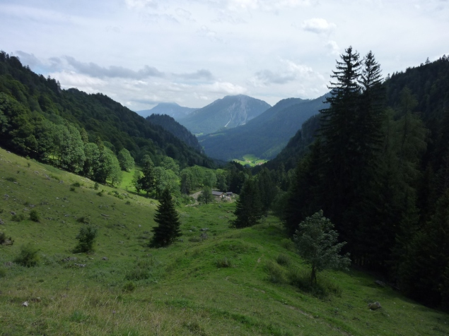 Foto: Manfred Karl / Wandertour / Gröhrkopf, 1562 m / Blick zur Nesslauer Alm / 22.10.2019 19:37:38